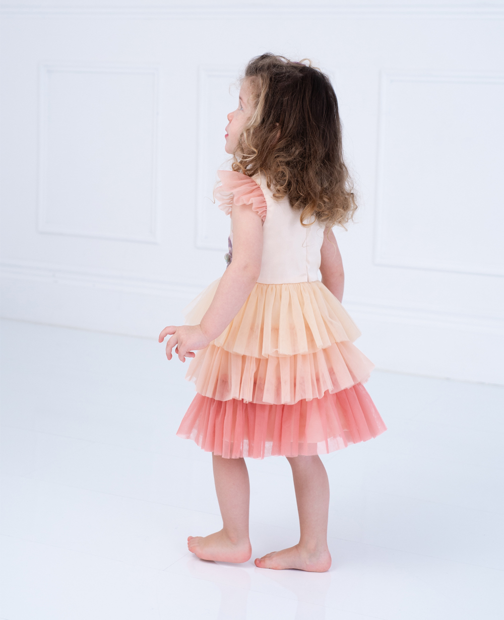 Baby Pink and Rose Tuelle Dress