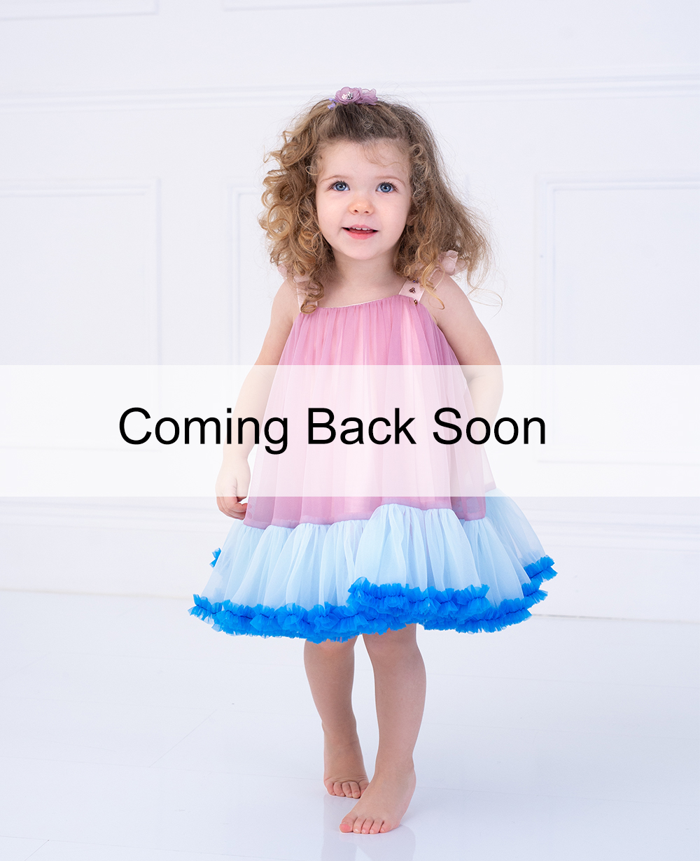 Baby Pink and Blue Frill Tuelle Dress