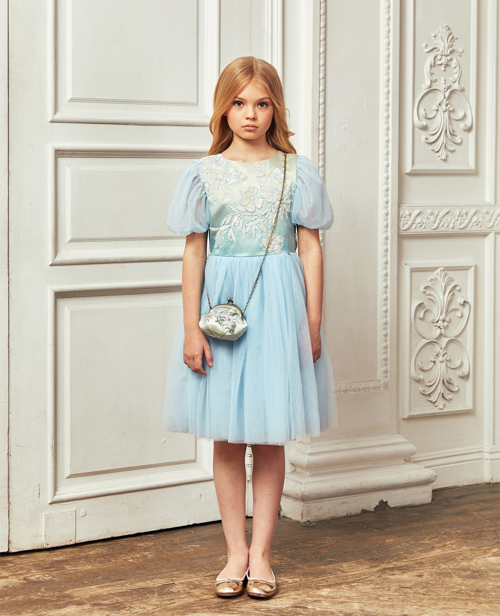 Baby Blue Short Sleeved Floral Embroidery Tuelle Dress