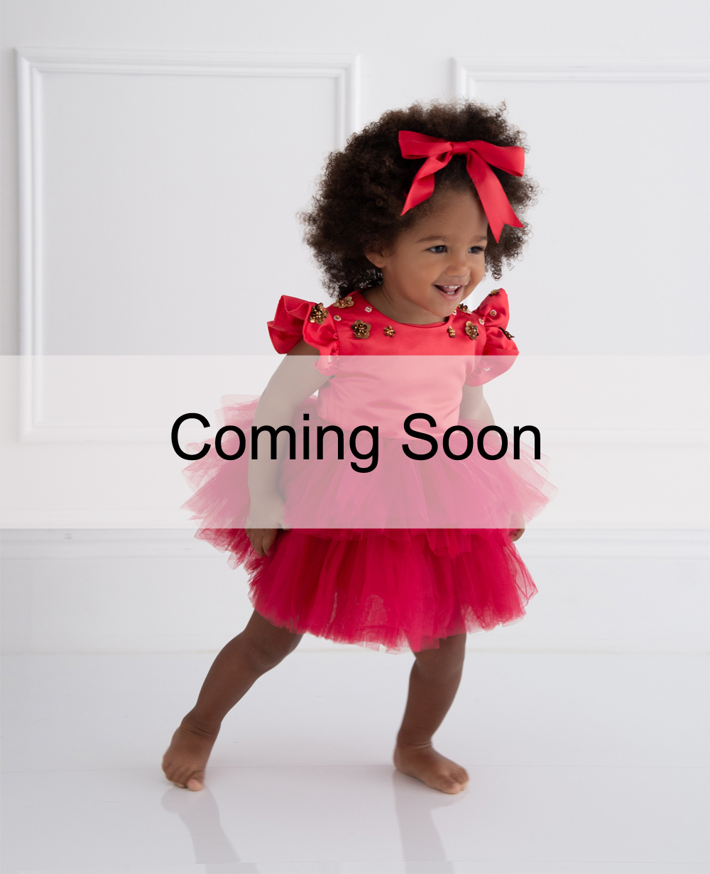 Red Capped Sleeve Tuelle Baby Dress