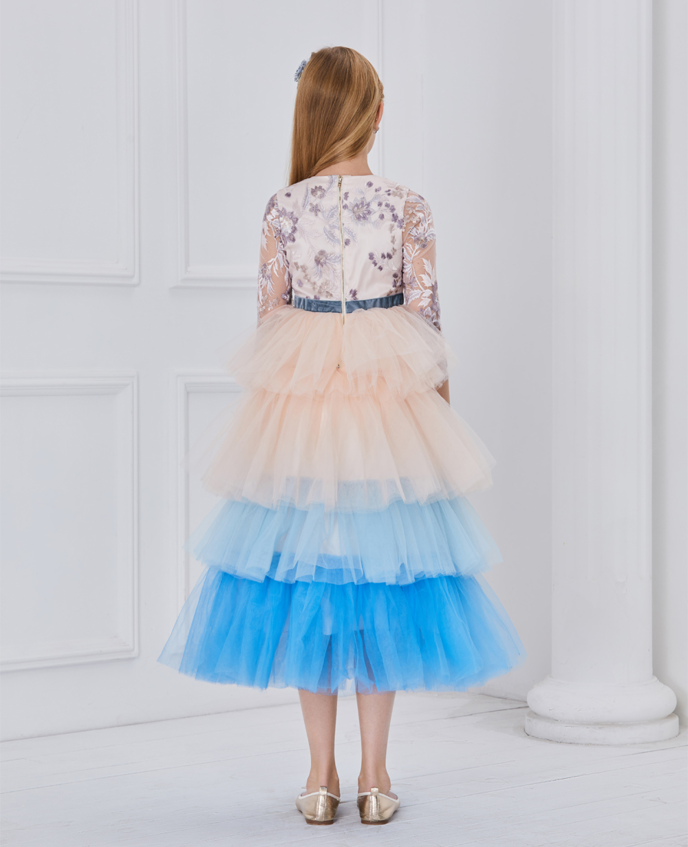 Pink and blue layered embroidery dress
