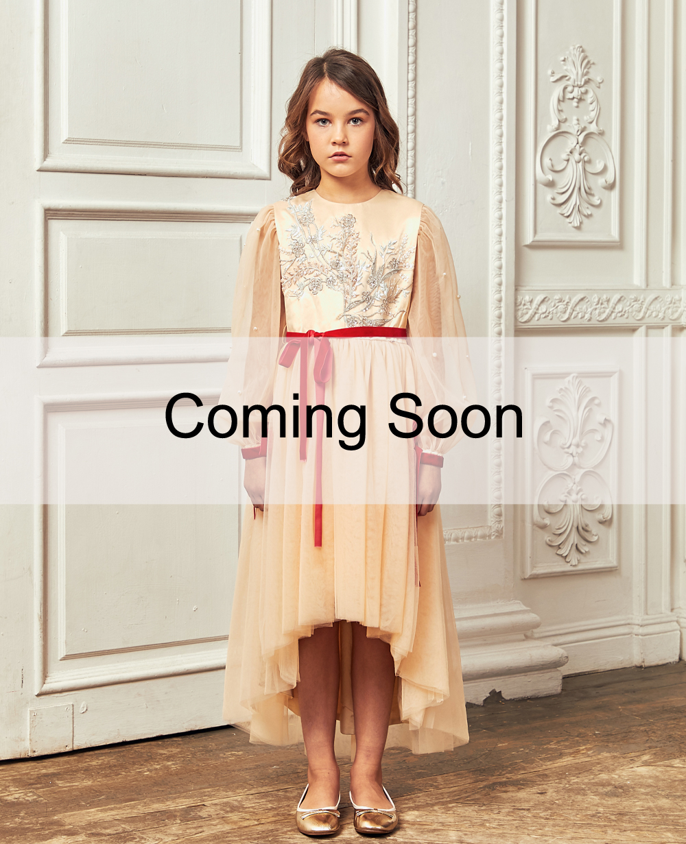 Peach Floral Embroided Tuelle Long Sleeve Dress