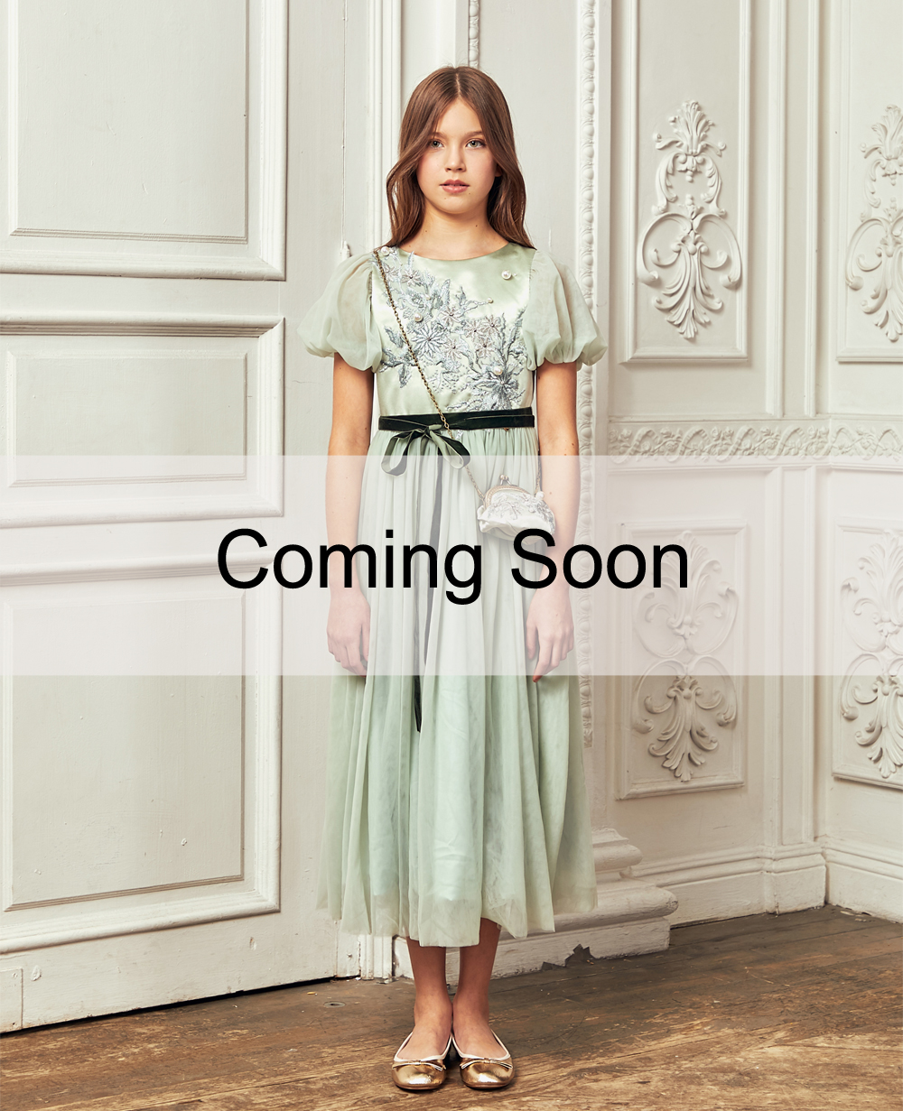 Mint Floral Embroidery Tuelle Dress