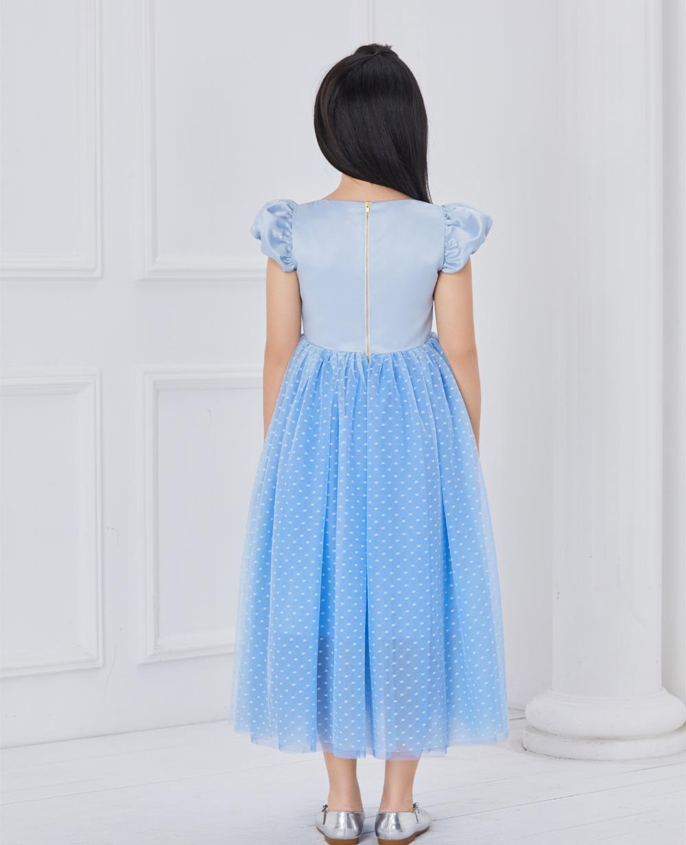 Blue Cinderalla Tuelle Dress
