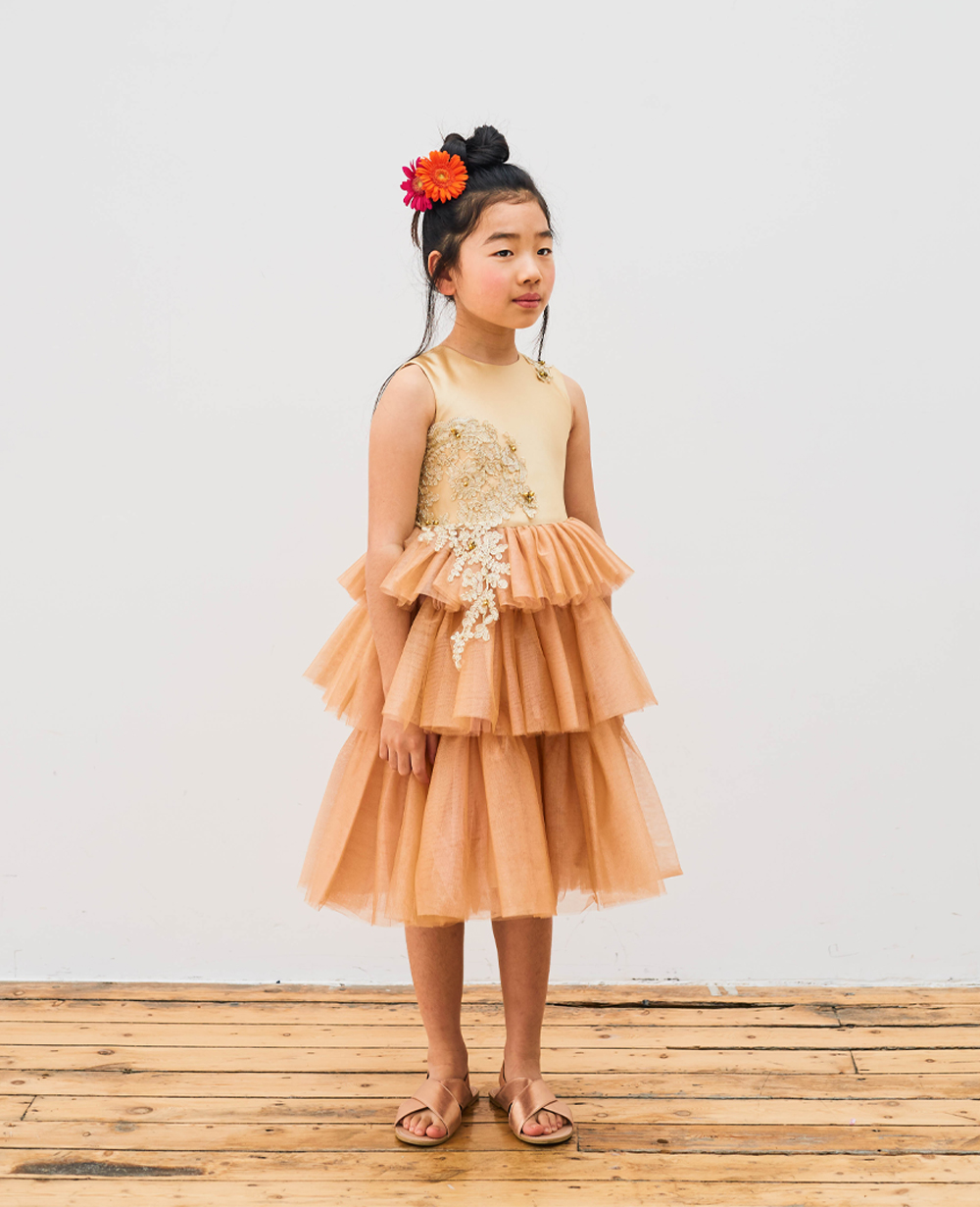 Golden Tulle 3 Tier Layered Dress