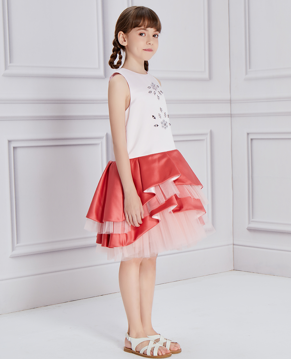Pink & Red Tulle Layered Dress