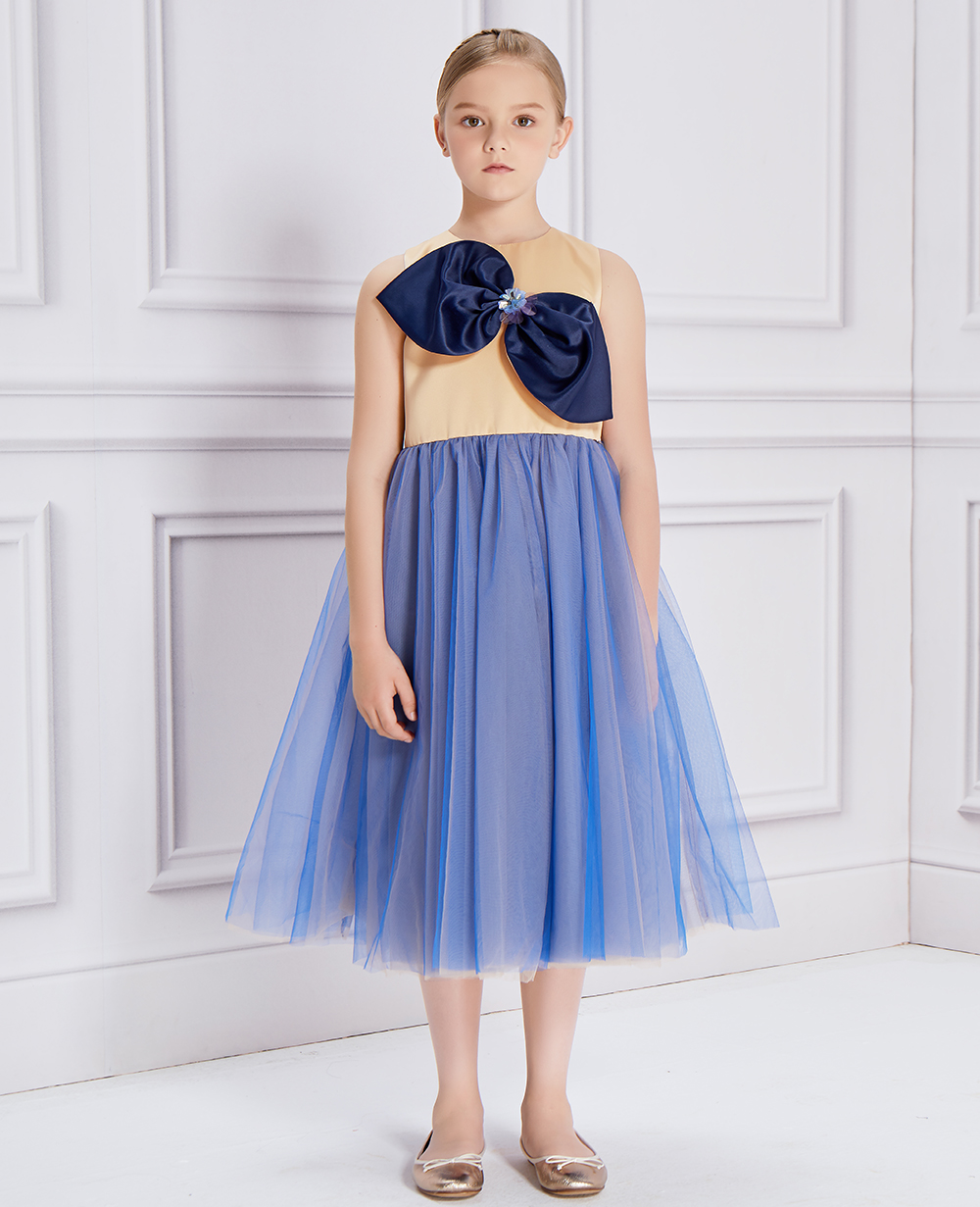 Blue Bow Tulle Dress