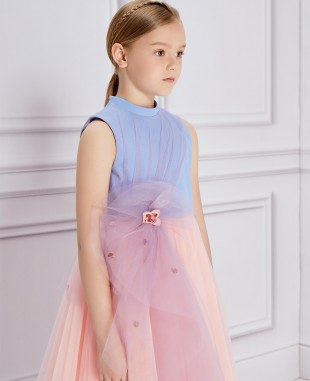 Blue & Pink Tulle Princess Dress