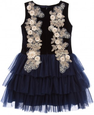 Daisy Blue Sleeveless Lace Dress Tuelle Skirt
