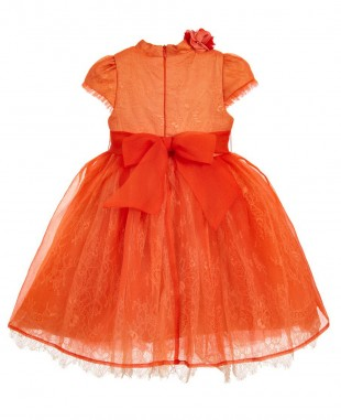 Orange Blossom Dress Lace Wedding Dress Evening Wear  Flowergirl