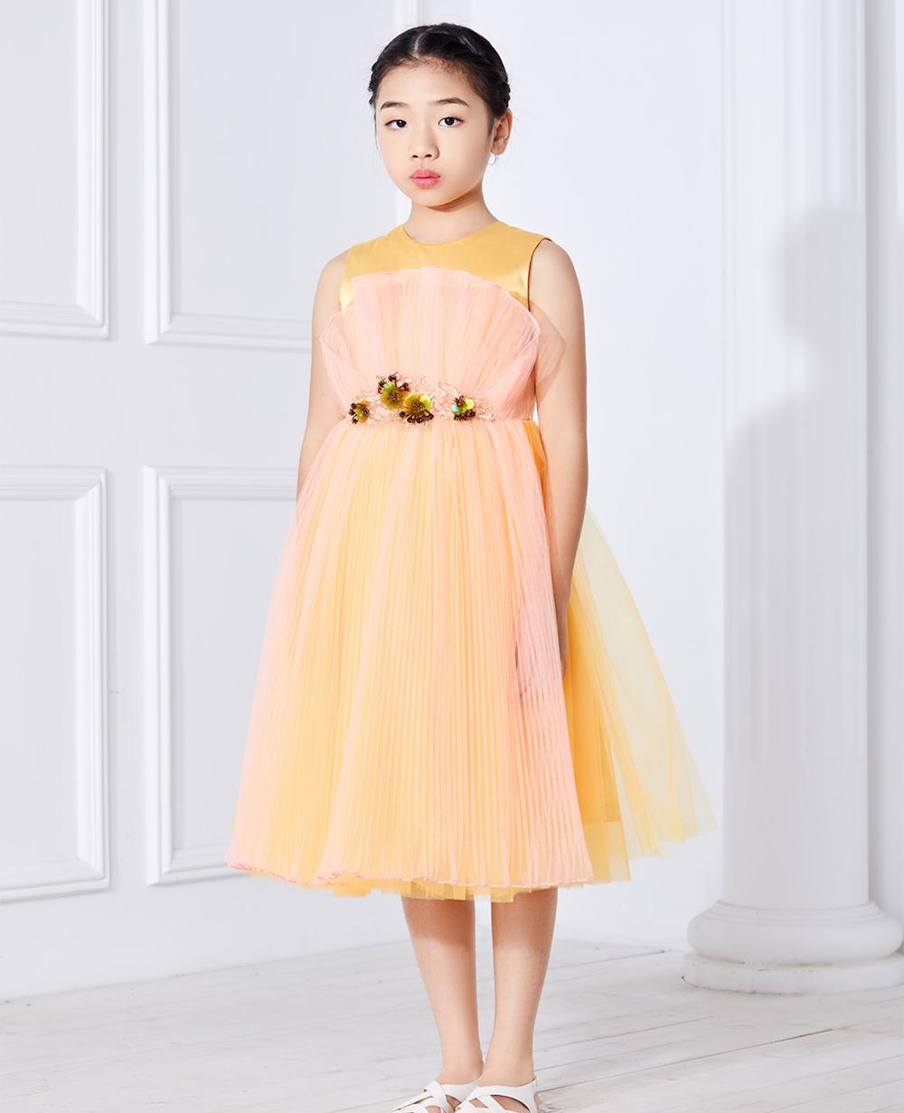 Orange Sleeveless Tulle Dress Embroidered Dress