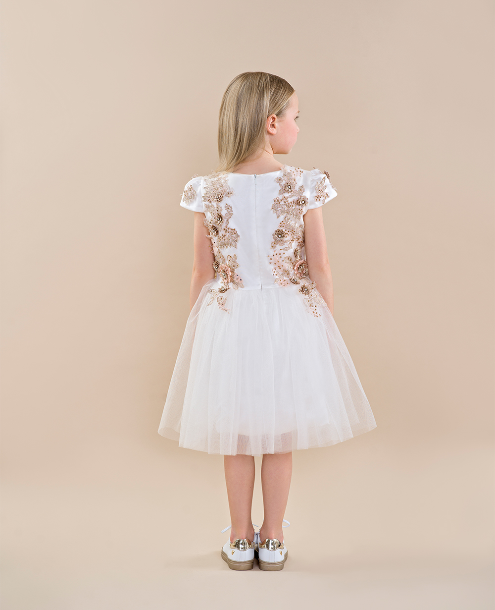 White and Pink Wedding Dress White Lace Dress Short Sleeve Tulle skirt